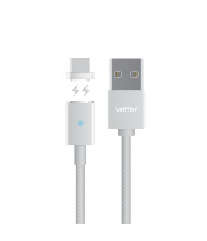 Magnetic Type C Cable, Silver